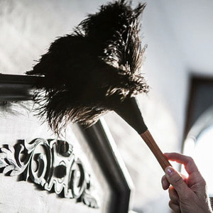 Duster brush - 35cm